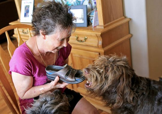 Woman Inspired to Train Service Dogs by Own Dog