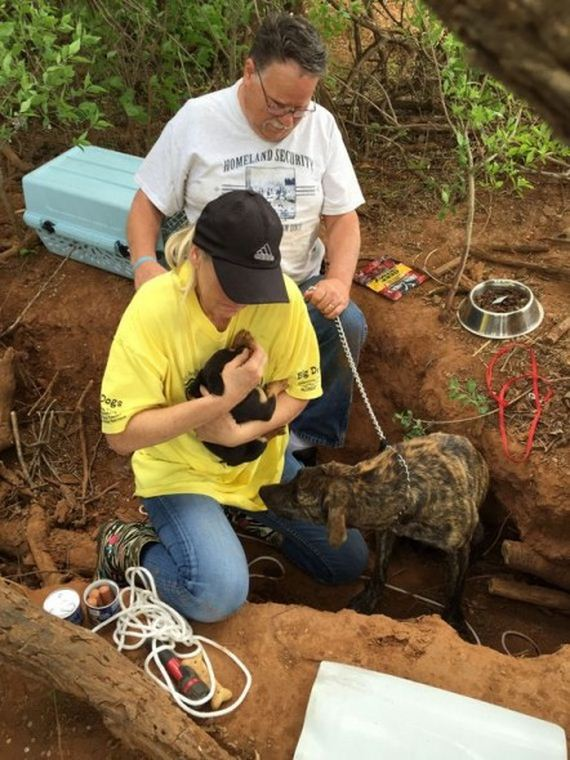 Rescuers Spent Three Days Saving Six Dogs Abandoned in Woods