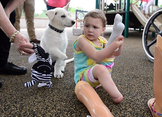 Little Girl With No Feet Adopts Dog With No Paw – They're The Perfect Pair