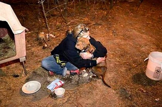 Amazing Reunion of Family and Stolen Dog Found at Cockfighting Bust