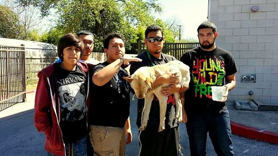 Texas Teenagers Save the Life of an Abandoned, Dying Dog