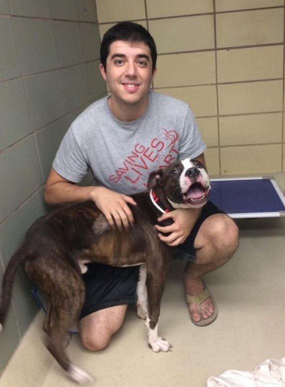 Scared Shelter Dog's Wish Comes True