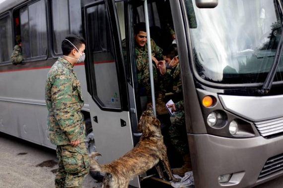 Dog Keeps Cabulco Rescuers Company
