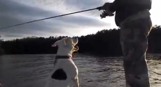 He Just Wanted To Go Fishing, But His Hilariously Chatty Dog Had Other Ideas