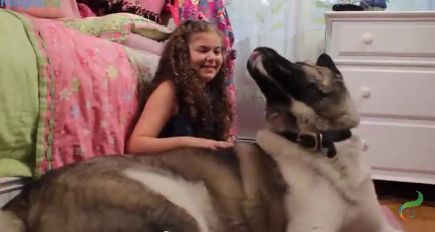 She Had Trouble Recovering After The Sandy Hook School Shooting But Then She Met This Gentle Giant…