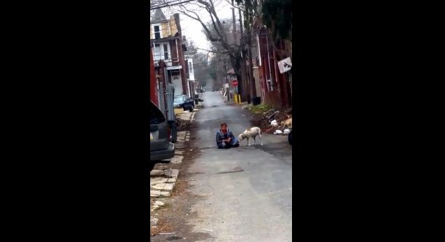 After Being Rescued From Living On The Street, This Dog Says Thank You In The Most Amazing Way
