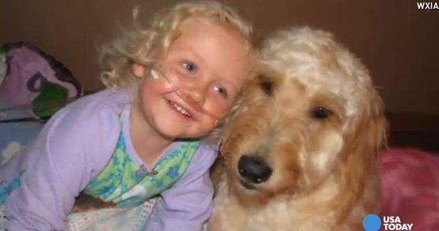 Toddler's Dog Is A Great Playmate But Also Keeps Her Alive