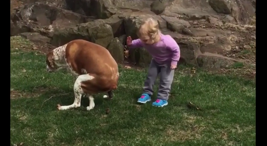 This Girl Was Being Potty Trained, So She Got Super Excited To See Her Dog Doing This