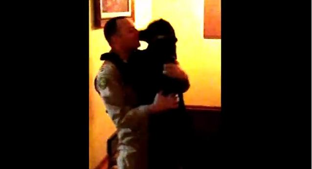 When You See This Dog's Reaction To Dad Returning From War, Your Heart Will Ache