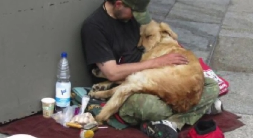 You May Judge These People For Having Pets, But The Animals Still Need Your Help