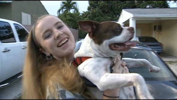 Dog Reunited With Family After Seven Year Separation