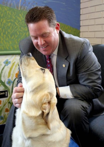 Chicago County Court to Put Therapy Dog in Courtroom