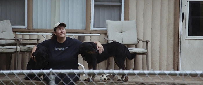 After Suffering From A Tragic Accident, This Woman Now Rescues Severely Abused Dogs From Horrible People