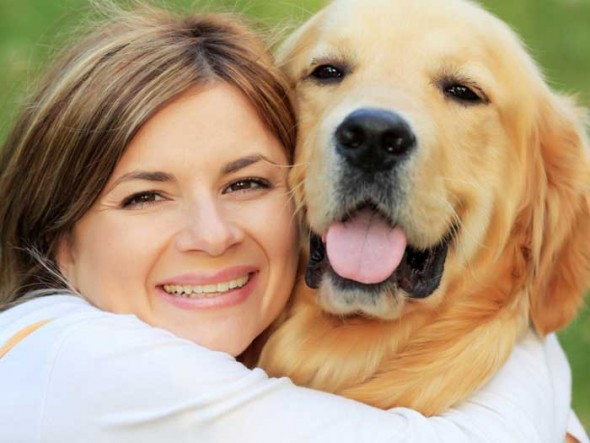 How to Manage Seasonal Anxiety for your Dogs