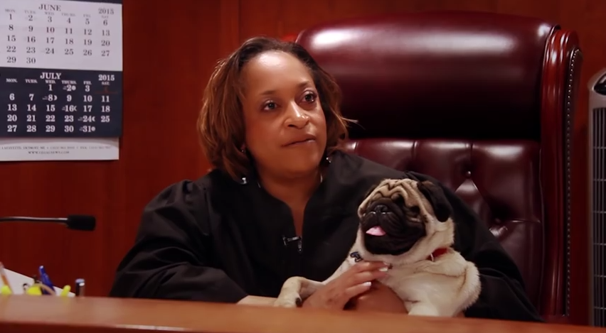 This Judge And Her Blind, Rescued Pug Are The Best Of Friends, And It's Too Cute!