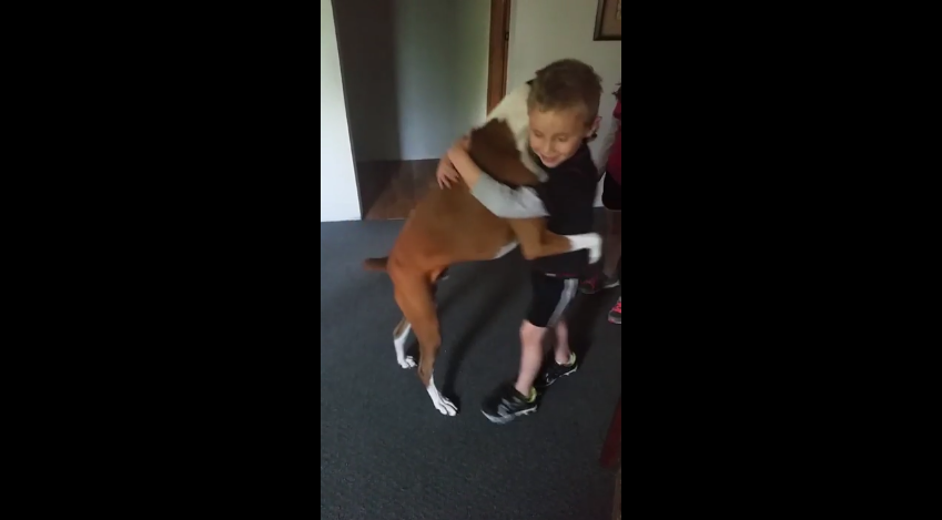 This Little Boy Asks For A Hug – What This Dog Did Blew Everyone Away