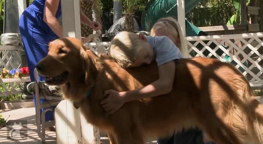 This Dog Saves Her Human's Life On A DAILY Basis…And The Way She Does It Is Pretty Amazing