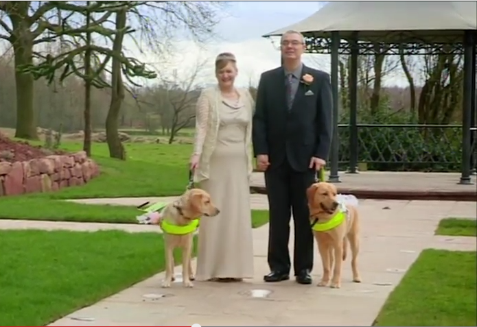 First These Guide Dogs Fell In Love, Then Their Humans Did Too.
