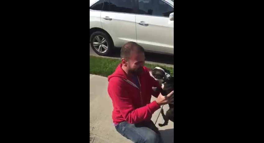 This Is, Hands Down, The Most Adorable Dog And Dad Reunion Ever…Too Adorable!