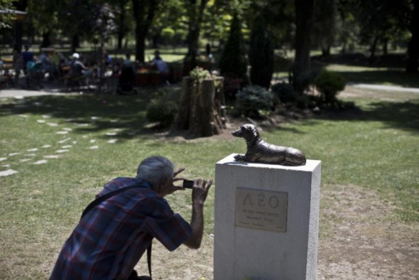 Dog Dies Saving Little Girl, Gets Statue Erected in His Honor
