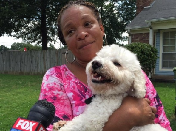 Anonymous Tip Helps Reunite Pet Owner with Stolen Dog
