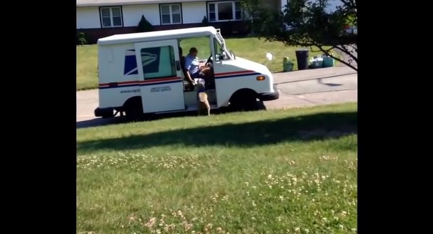 He Caught His Dog Doing Something To The Mail Carrier You Need To See To Believe