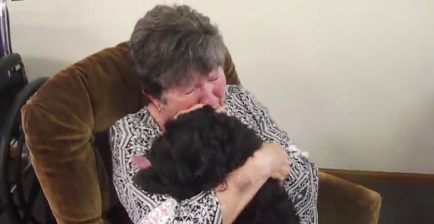 Woman's emotional reunion with missing dog