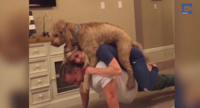 They Put Their Dog On Their Shoulders, And What They Did Next Is Awesome