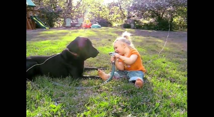 This Little Girl's Reaction To Hosing Down Her Dog Is The Funniest Thing Ever