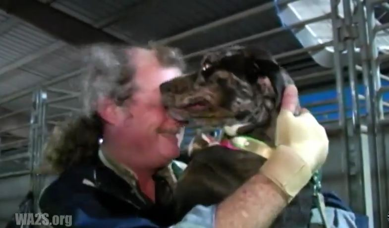 He Lost Everything During Katrina. This Is The Moment He Reunited With His BFF