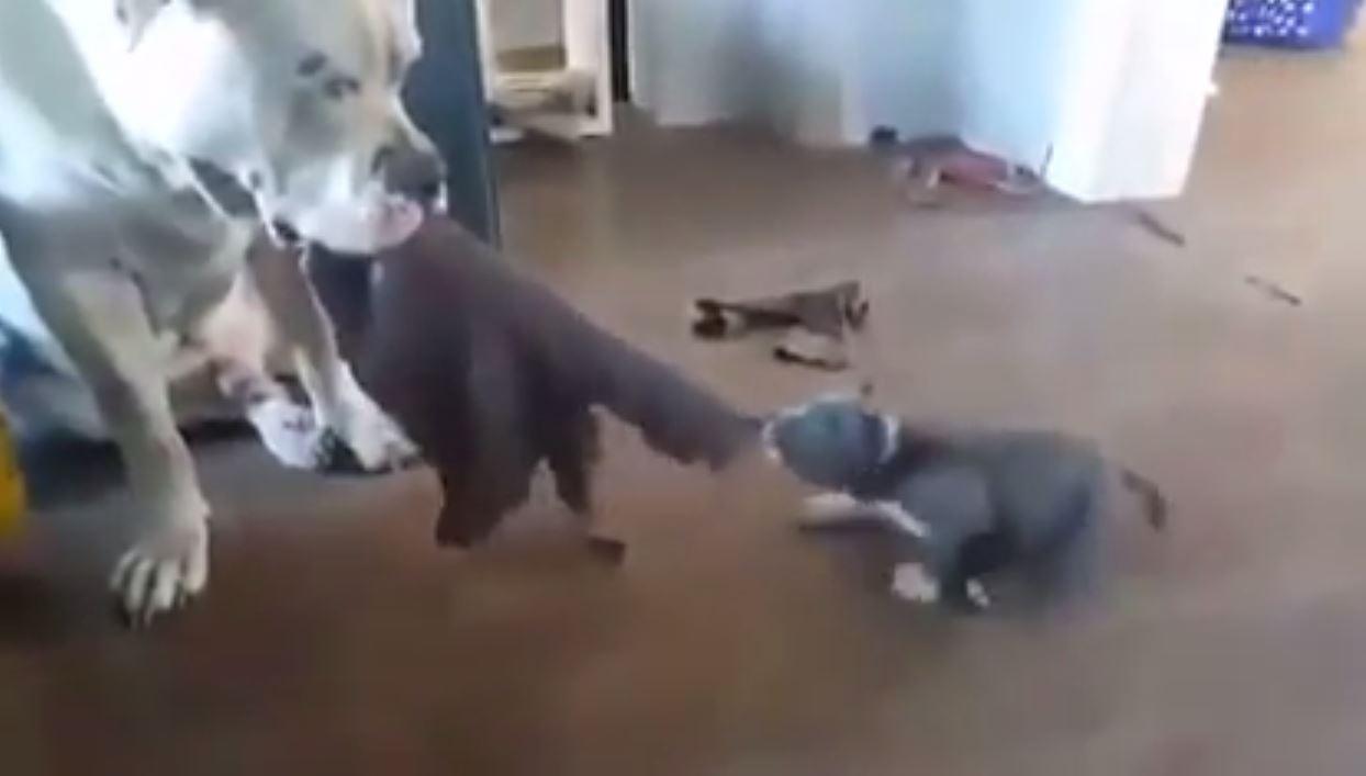 """I've got this."""