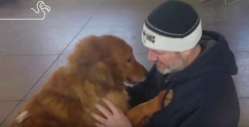 Reunited & It Feels So Good: Heartwarming Reunions Of Dogs Who Found Their Way Home!