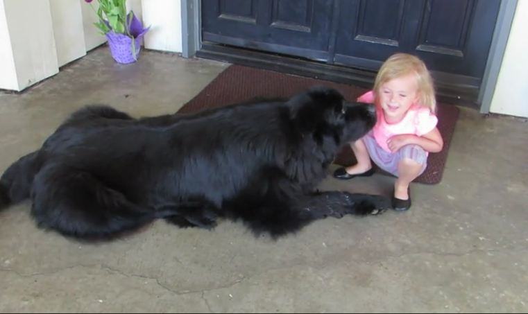Little Girl Can Speak To Dogs