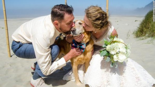 Couple Give Special Role in Wedding to Terminally Ill Dog