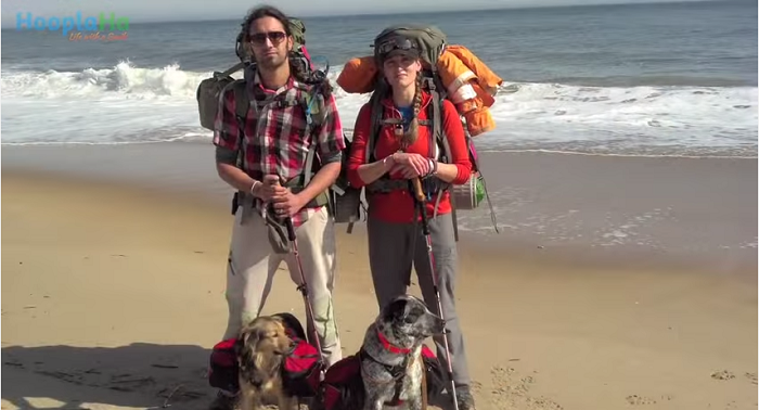 Couple Take Cross Country Dog Walk To Raise Awareness For Pet Therapy And Animal Rescue