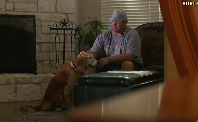 They Gave Away Their Therapy Puppy To A Better Home 10 Years Ago. Then They Get A Call From A Shelter That Blew Their Mind.
