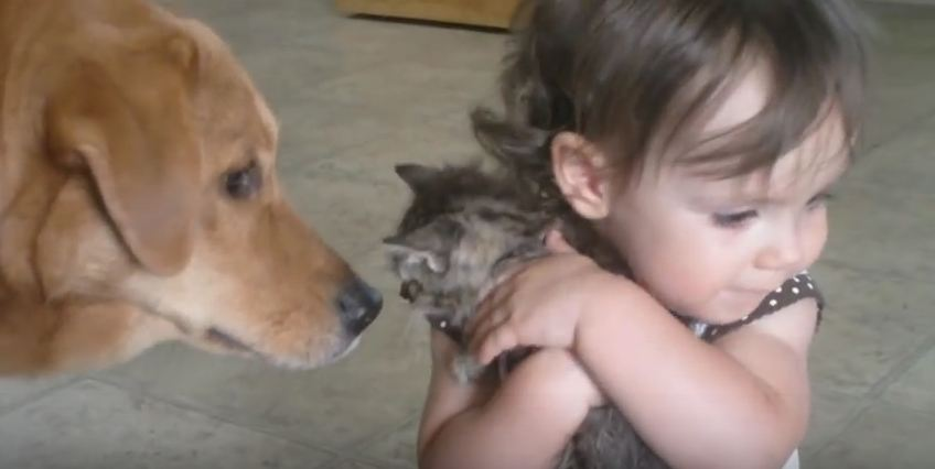 She Loves Her New Kitten So Much, She's Not Letting Anyone Touch Him…EVER
