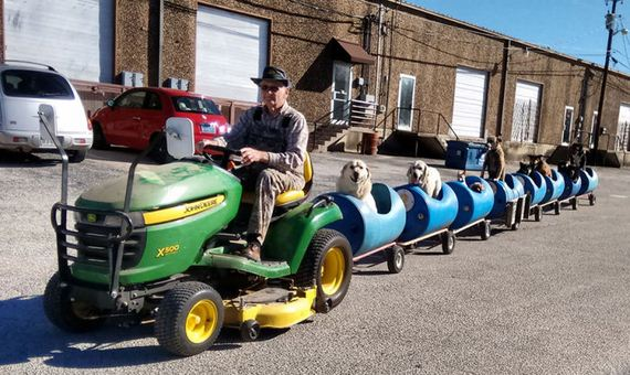 This 80 Year Old Man Built A Special Train So He Could Take Rescue Dogs For Rides