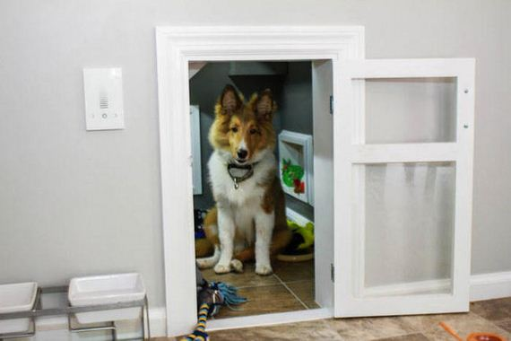 This Dog Has His Very Own Room Under The Stairs
