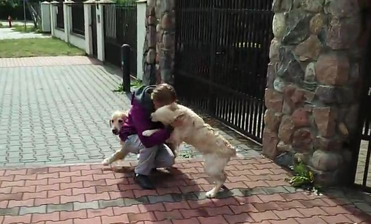 She Was Away For Too Long, But When Mom Returned — What An Amazing Welcome