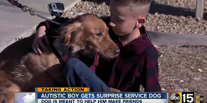 This Boy Had No Friends Until Kind Strangers Got Him One He So Desperately Needed