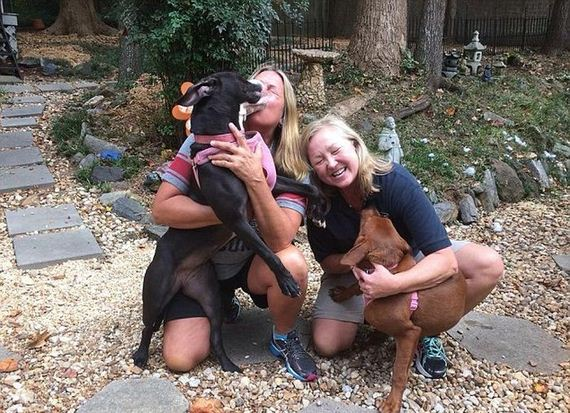 Hugging Dogs Find A New Home Thanks To The Internet