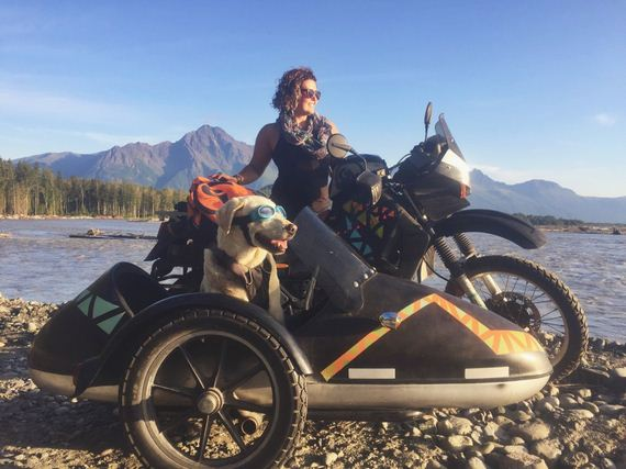 Senior Dog Travels North America In A Sidecar And Loves Every Single Minute