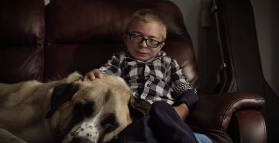 Boy With Painful Disease Meets Abused, Abandoned Dog And Their Lives Change Forever