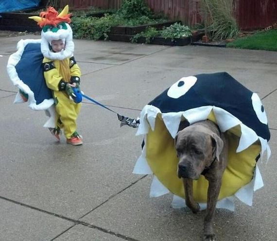 Your Dog Needs a Halloween Costume Too
