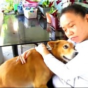 Sweet dog loves to give hugs
