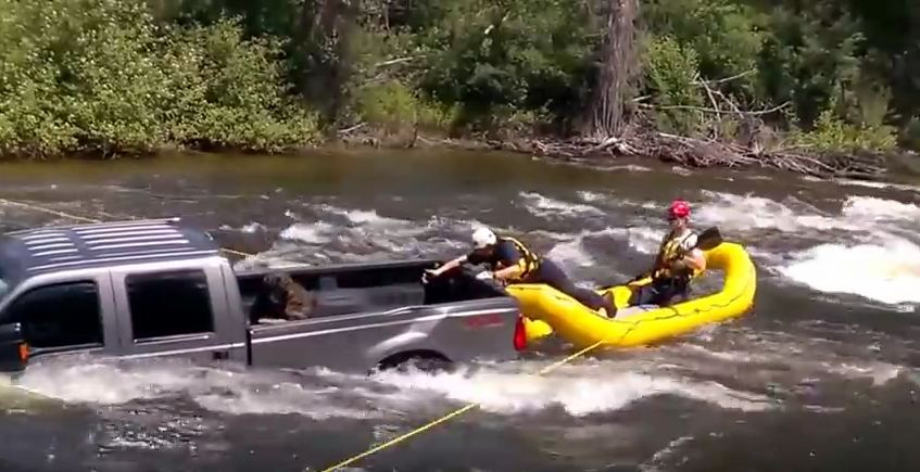 CAUGHT ON VIDEO: Dog Trapped In Submerged Truck Bed, But You'll Be Cheering By The End!