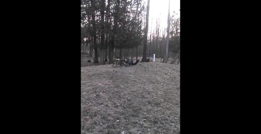 Dog playing fetch drags boy across yard