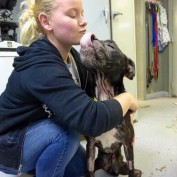 PAWS Atlanta Helps Starved Surrendered Dog