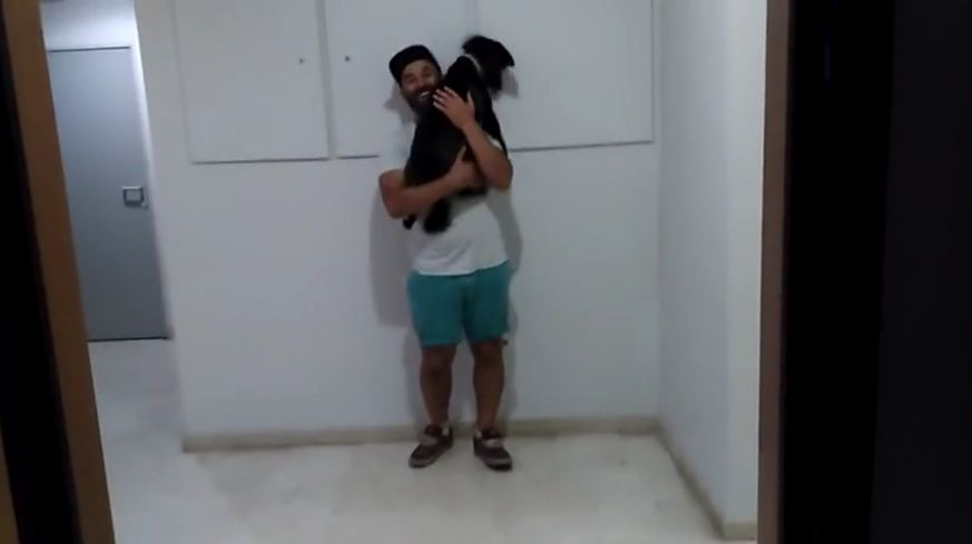 Dog jumps high to give hugs